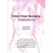 Pelvic Floor Recovery Essentials – New!