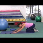 How to Strengthen with Physio Lower Back Exercises