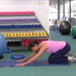 lower back exercises video
