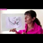 What is a Pelvic Prolapse? Prolapse Video for Women
