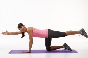 Alternate Arm and Leg Raises