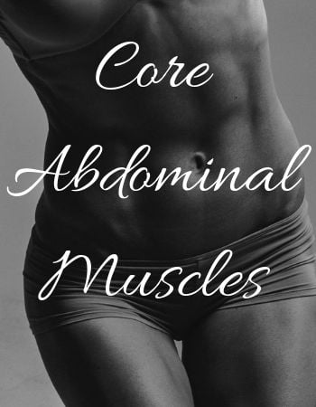 Core abdominal muscles
